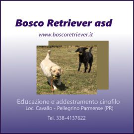 bosco retriever
